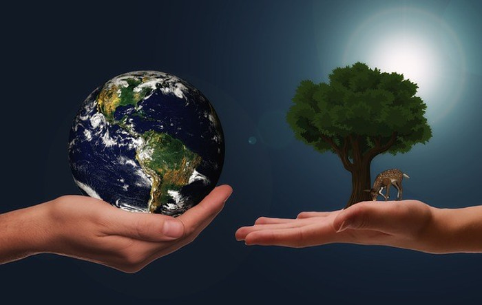 Looking After Our Environment